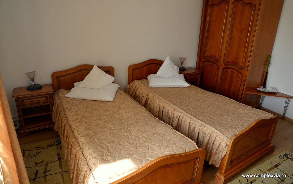Cazare la intrarea in Targu Mures la Via in camera dubla cu mic dejun inclus: Camera tip
